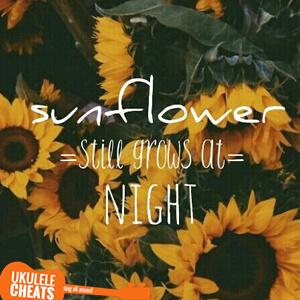 Sunflower Ukulele Chords